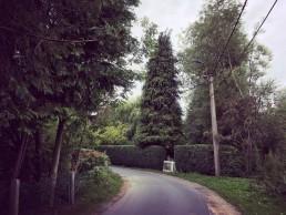 Liedermeersweg