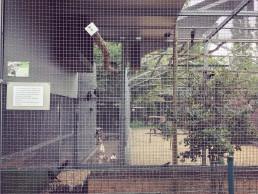 Opvangcentrum voor vogels en wilde dieren